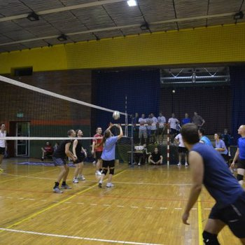 Galeria Turniej Siatkówki 2014
